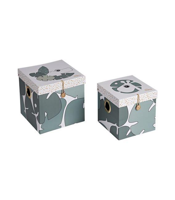 SET 2 CAJAS GRANDES TINY TROPICS - 5095963